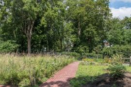 Caldwell Pollinator Garden