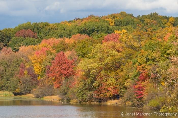 Fall- Garret Mountain